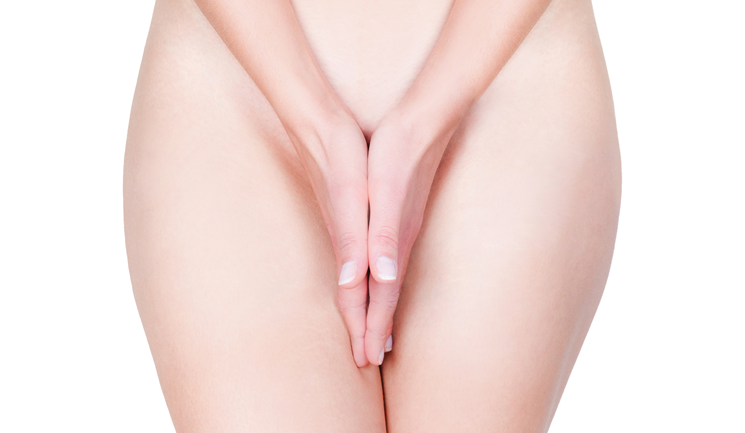 Special Feature Vaginal Rejuvenation Aesthetics